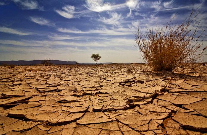 desert_700.jpg